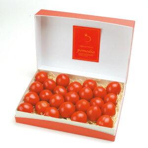 【ふるさと納税】【数量限定】上級 二つ星 至高のフルーツトマトpomodiaスイーツBOX1.0kg(18〜30個)◆