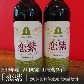 【ふるさと納税】 早川町産 山葡萄ワイン「恋紫」2018年度産・2019年度産セット 720ml