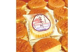 【ふるさと納税】銘菓「富士川」詰合せ(15個入)