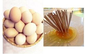 【ふるさと納税】初たまご プレミアムひまわりたまご(54個程度)※破卵補償10個含(冷蔵)