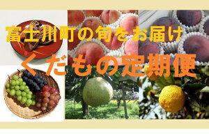 【ふるさと納税】果物王国やまなし!くだもの定期便(年6回)