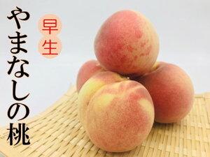 【ふるさと納税】山梨県産「矢崎さん家」のもも8〜16玉(早生品種)約2.5kg