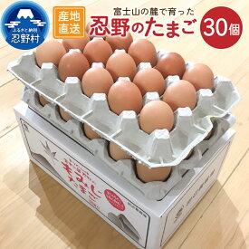 【ふるさと納税】卵 たまご 旨味 30個 新鮮 こだわり卵 産地直送 忍野村 山梨県産