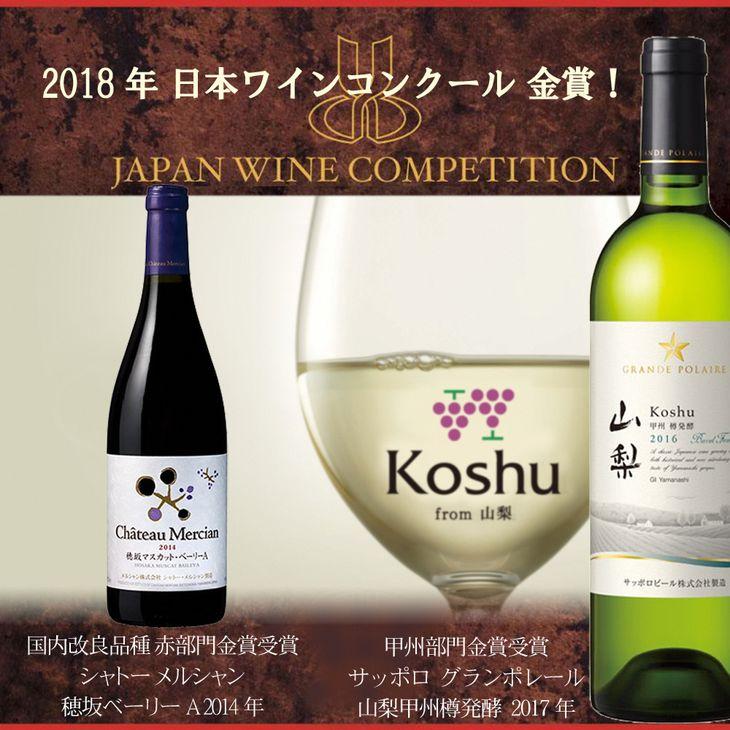 【ふるさと納税】日本ワインコンクール金賞 2本セット R208☆山梨の受賞ワインを味わう☆