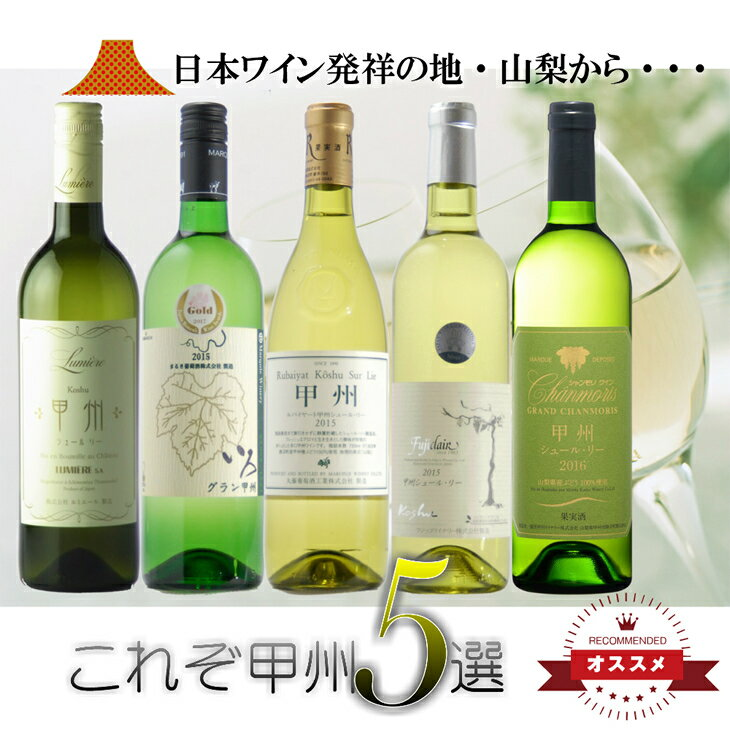 【ふるさと納税】甲州シュール・リー 5本セット R310☆日本ワイン発祥の地、山梨より厳選 ☆