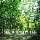 自然とひとつになるヨガin山中湖?広葉樹の森の中、野鳥の声とヨガ体験?