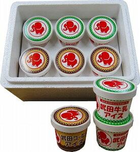 【ふるさと納税】武田牛乳アイス<ミックスギフト>(12個入り) │ アイスクリーム6個 コーヒーアイス6個 詰合せ 詰め合わせ お菓子 スイーツ 氷菓 アイス アイスクリーム セット お取り寄