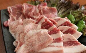 【ふるさと納税】富士ケ嶺ポーク 【焼肉用総重量約1.5kg】