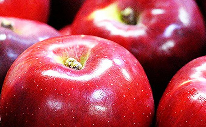 【ふるさと納税】【H31年度分先行予約】長野県産 紅玉 約4キロ 【果物類/林檎・りんご・リンゴ】 お届け:2019年9月下旬〜2019年10月下旬