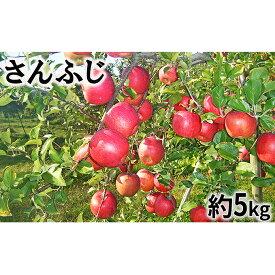 【ふるさと納税】【2019年度産】さんふじ家庭用5kg 【果物類・フルーツ・リンゴ・林檎】 お届け:2019年12月10日〜2020年2月29日