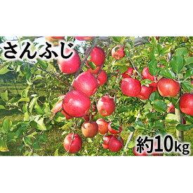 【ふるさと納税】【2019年度産】さんふじ家庭用10kg 【果物類・フルーツ・リンゴ・林檎】 お届け:2019年12月10日〜2020年2月29日