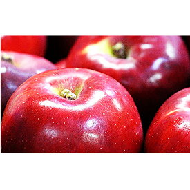 【ふるさと納税】【2020年度産】長野市産 紅玉 約4キロ 【果物類・林檎・りんご・リンゴ】 お届け:2020年9月下旬〜2020年10月下旬
