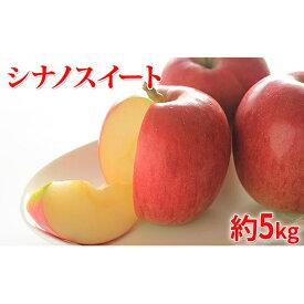 【ふるさと納税】【2020年度産】シナノスイート家庭用5kg ※クレジット限定 【果物類・林檎・果物類・フルーツ】 お届け:2020年10月15日〜2020年11月10日