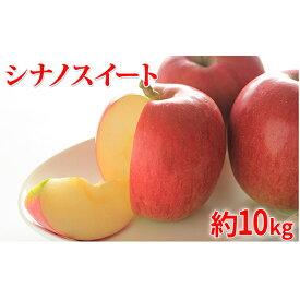 【ふるさと納税】【2020年度産】シナノスイート家庭用10kg ※クレジット限定 【果物類・林檎・果物類・フルーツ】 お届け:2020年10月15日〜2020年11月10日