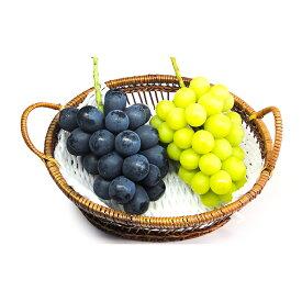【ふるさと納税】【2021年分先行予約】長野市産ナガノパープル・シャインマスカット詰め合せ(特秀)2房 【マスカット・フルーツ・果物類・ぶどう・巨峰】 お届け:2021年9月中旬〜順次発送