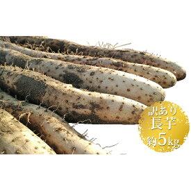 【ふるさと納税】長野市松代産 TAKANO農園 長いも 約5kg(訳あり) 【野菜・根菜】 お届け:2021年11月上旬〜2022年4月下旬