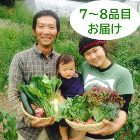 【ふるさと納税】たべくら農園 子育て農家の野菜セット(Sサイズ)農薬・化学肥料不使用 7~8品目お届け