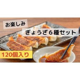 【ふるさと納税】お楽しみ餃子6種セット 合計120個! 信州ご当地の味