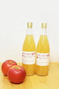 【ふるさと納税】005-006 100%りんごストレートジュース720ml×2本セット