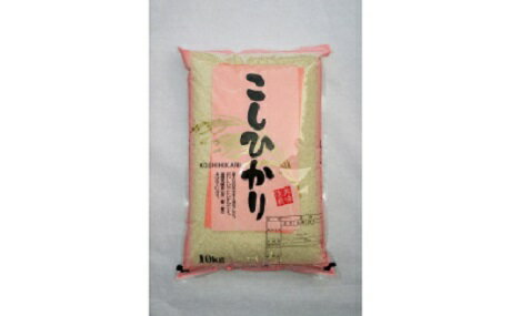 【ふるさと納税】020-008「関口さんちのお米」コシヒカリ20kg