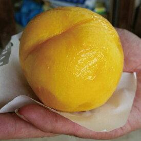 【ふるさと納税】≪7月下旬頃より発送≫【峰成り】厳選!トロける濃厚な甘さのマンゴーピーチ約2kg《市川ファーム》【果物・もも・桃・フルーツ・ピーチ・くだもの】