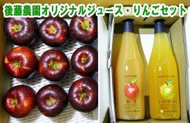 【ふるさと納税】後藤農園オリジナルジュース・りんごセット【果実飲料・ジュース・飲料類・果汁飲料・りんごジュース・リンゴ・林檎】