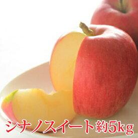 【ふるさと納税】【先行予約】≪10月上旬〜順次発送≫シナノスイート 約5kg 【果物類・林檎・りんご・リンゴ】