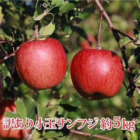 【ふるさと納税】【先行予約】≪11月上旬〜順次発送≫サンふじ 小玉 約5kg(訳あり)【果物類・林檎・りんご・リンゴ】