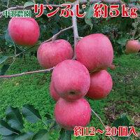 【ふるさと納税】サンふじ約12〜20個入約5kg《中沢農園》■2021年発送■※12月頃より発送林檎りんごリンゴ