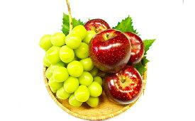 【ふるさと納税】【先行予約】フルーツ三昧セット(シャインマスカット+秋映)2kg 【果物類・フルーツ・ぶどう・ブドウ・りんご・リンゴ】 お届け:2019年10月上旬〜10月中旬