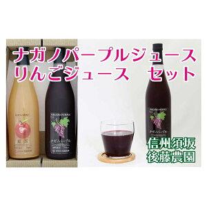 【ふるさと納税】【後藤農園直送】「ナガノパープルジュース」&「林檎ジュース」セット 【果実飲料・ジュース・飲料類・果汁飲料・りんご・りんごジュース・リンゴ・林檎・ぶどうジ