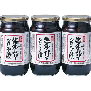 【ふるさと納税】ツルヤ 完熟生ブルーベリーシロップ漬 【加工食品】