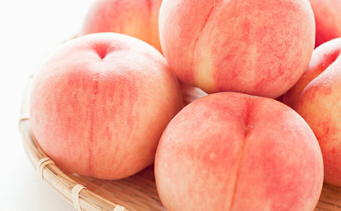 【ふるさと納税】浅間水蜜桃約5kg【あかつき】 【果物類/もも】 お届け:2018年8月上旬〜下旬