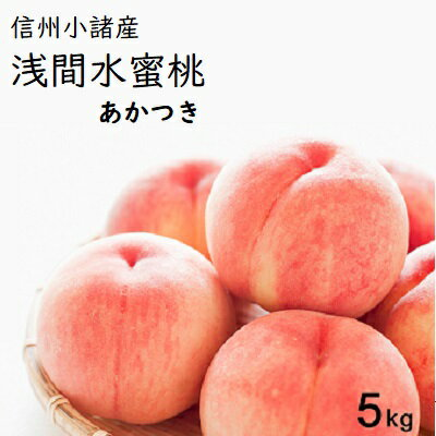 【ふるさと納税】信州小諸産「浅間水蜜桃」みつおかのもも約5kg【あかつき】 【果物・もも・桃・フルーツ】 お届け:2019年7月下旬〜8月中旬