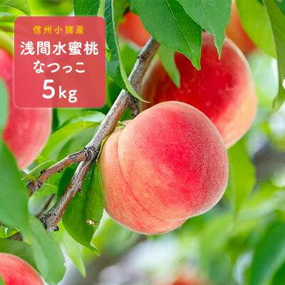 【ふるさと納税】信州小諸産「浅間水蜜桃」みつおかのもも約5kg【なつっこ】 【果物・もも・桃・フルーツ】 お届け:2019年8月上旬〜8月下旬