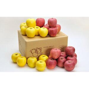 【ふるさと納税】サンふじ・シナノゴールド詰合せ 約10kg 【果物・フルーツ・林檎・りんご・リンゴ】 お届け:2019年12月1日〜2020年2月28日まで