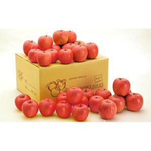 【ふるさと納税】サンふじ 約10kg 【果物・フルーツ・林檎・りんご・リンゴ】 お届け:2019年12月1日〜2020年2月28日まで