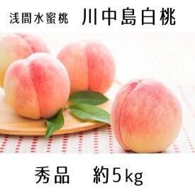 【ふるさと納税】浅間水蜜桃 みつおかのもも 川中島白桃 秀品 約5kg 【果物・もも・桃・モモ・フルーツ・白桃・ 約5kg】 お届け:2021年8月中旬〜9月上旬※天候によりお届け時期が前後する場合があります※