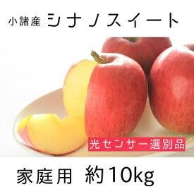【ふるさと納税】信州小諸産 シナノスイート 家庭用 約10kg 【果物類・林檎・りんご・リンゴ・シナノスイート・家庭用・約10kg】 お届け:2021年10月中旬〜11月上旬