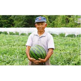 【ふるさと納税】南信州産すいか(3L×1玉) 【果物類・スイカ】 お届け:2020年7月15日〜8月15日