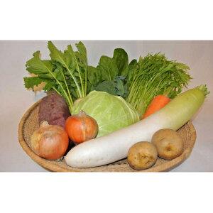 【ふるさと納税】季節の有機野菜「詰合せセット」(10種) 【野菜・セット・詰合せ・福祉用品】