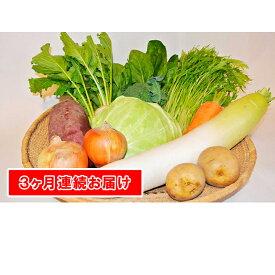 【ふるさと納税】【定期便】季節の有機野菜「詰合せセット」(10種×3回) 【定期便・野菜・セット・詰合せ・福祉用品】
