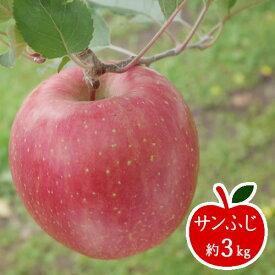【ふるさと納税】サンふじ 約3Kg 【 りんご フルーツ 長野県 飯山市 】