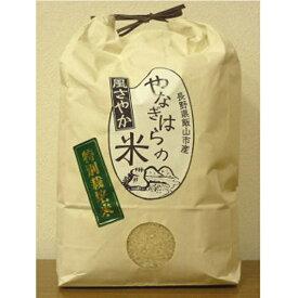 【ふるさと納税】特別栽培米「風さやか」5kg×2袋【 白米 長野県 飯山市 】