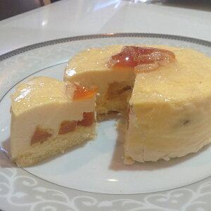 【ふるさと納税】市田柿チーズケーキ