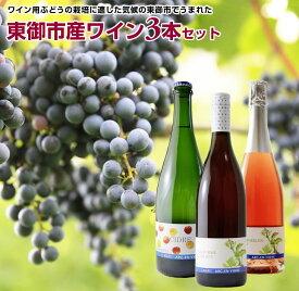 【ふるさと納税】東御市産ワイン3本セット(アルカンヴィーニュ産)