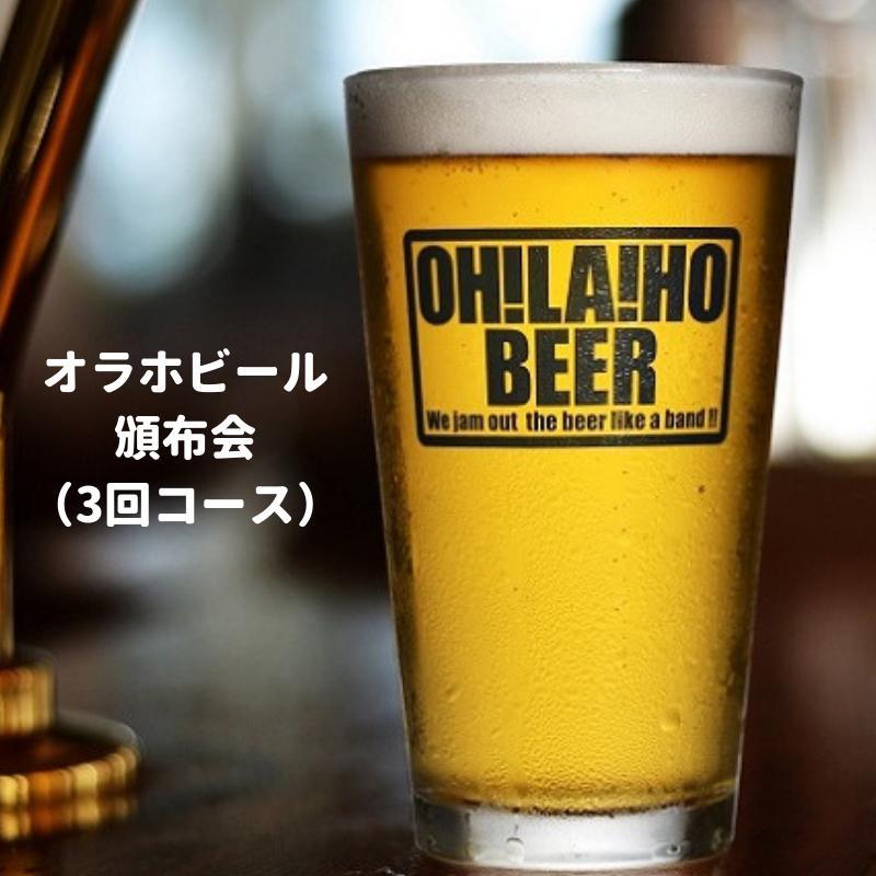 【ふるさと納税】オラホビール頒布会(3回コース)