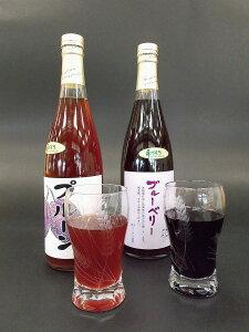 【ふるさと納税】[CH-05]2種類の果汁ジュースセット ブルーベリー ブルーベリージュース プルーンジュース プルーン 果汁100%