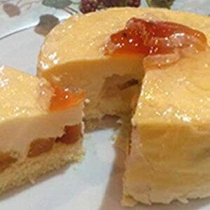 【ふるさと納税】市田柿チーズケーキ 【チーズケーキ・お菓子・スイーツ】