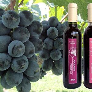 【ふるさと納税】こだわり葡萄酒 ナガノパープルワイン2本セット 【ワイン・お酒】 お届け:2020年1月下旬より順次発送